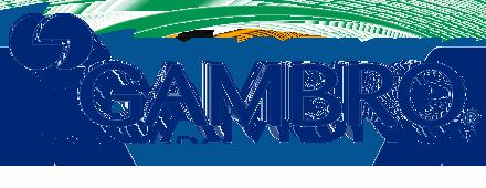 Gambro Hospal GmbH
